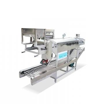 Middle Scale High Cost-Effective 2D Puffed Snack Food Machine